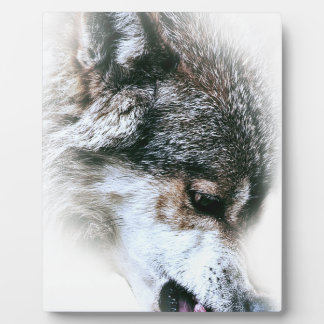 Wild Wolf Face Angry Eating Plaque