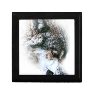 Wild Wolf Face Angry Eating Small Square Gift Box