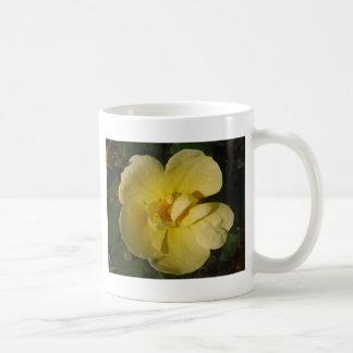 Wild Yellow Rose Mugs