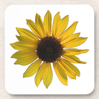 Wild Yellow Sunflower Coaster
