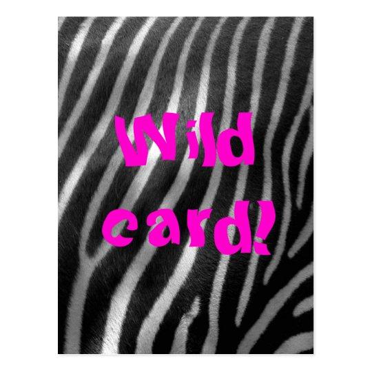 wild zebra background and text postcard