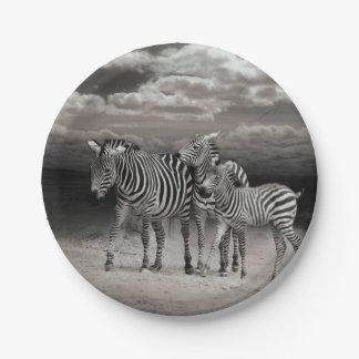 Wild Zebra Socialising in Africa 7 Inch Paper Plate