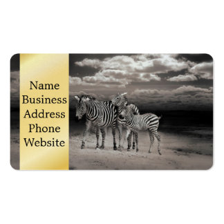 Wild Zebra Socialising in Africa Pack Of Standard Business Cards