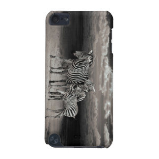 Wild Zebra Socialising in Africa iPod Touch (5th Generation) Cover