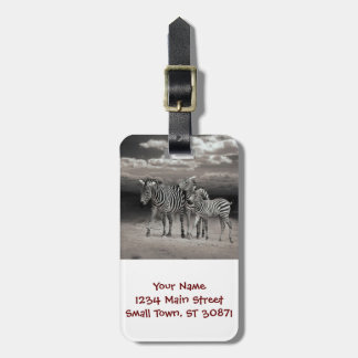 Wild Zebra Socialising in Africa Bag Tags
