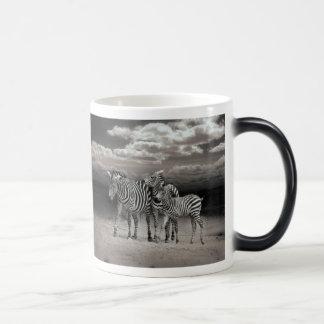 Wild Zebra Socialising in Africa Morphing Mug