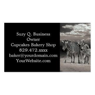 Wild Zebra Socialising in Africa Pack Of Standard Business Cards