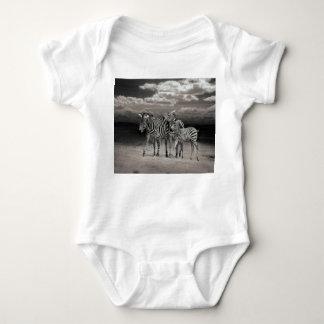 Wild Zebra Socialising in Africa Shirt