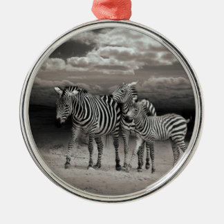 Wild Zebra Socialising in Africa Silver-Colored Round Decoration