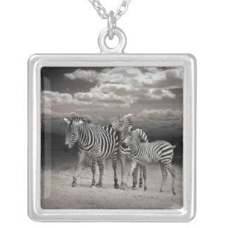Wild Zebra Socialising in Africa Square Pendant Necklace