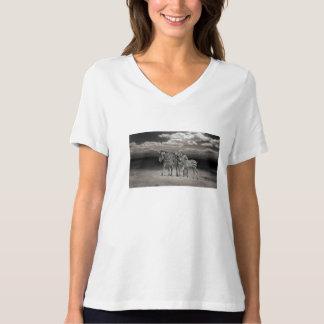 Wild Zebra Socialising in Africa T-shirts