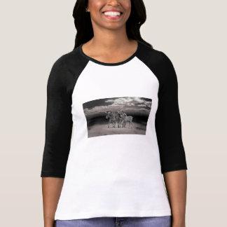 Wild Zebra Socialising in Africa Tshirts