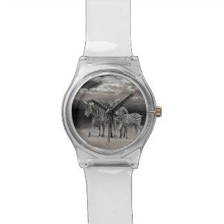 Wild Zebra Socialising in Africa Wristwatches