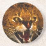 Wildcat Coasters