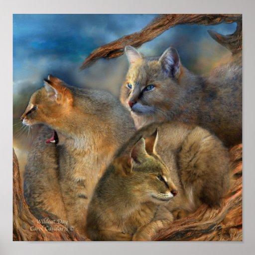 Wildcat Day Art Poster/Print Poster
