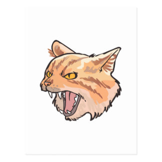Wildcat Mascot Postcard