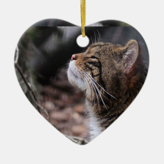 Wildcat Moods ornament