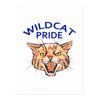 Wildcat Pride Postcard