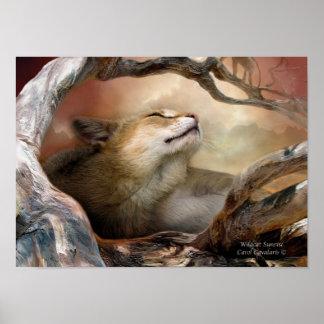 Wildcat Sunrise Art Poster/Print Poster