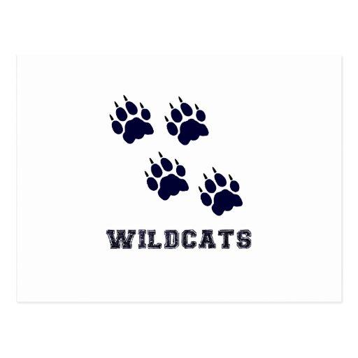 Wildcat Tracks Postcard