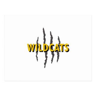 WILDCATS CLAW MARKS POSTCARD