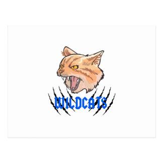 Wildcats Claw Tears Postcard