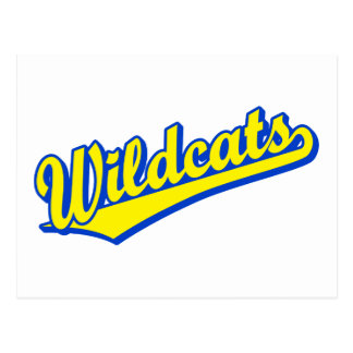 Wildcats script logo in gold and blue 2 postcard