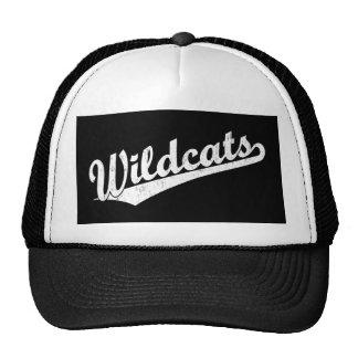 Wildcats script logo in gold in white cap