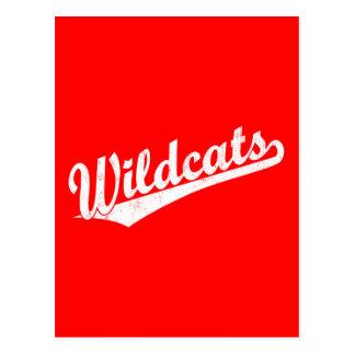 Wildcats script logo in gold in white postcard