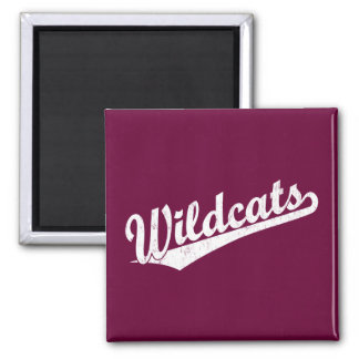 Wildcats script logo in gold in white square magnet