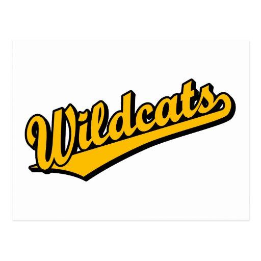 Wildcats script logo in orange postcard