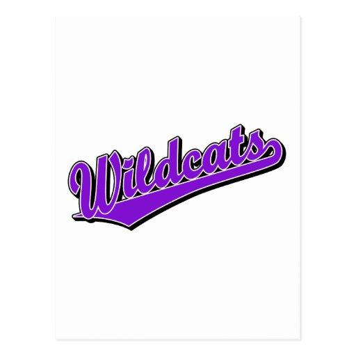 Wildcats script logo in purple post card