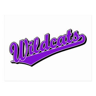Wildcats script logo in purple postcard