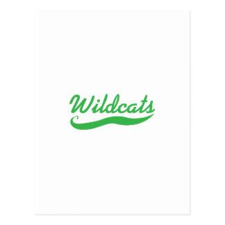 WILDCATS TEAM POSTCARD