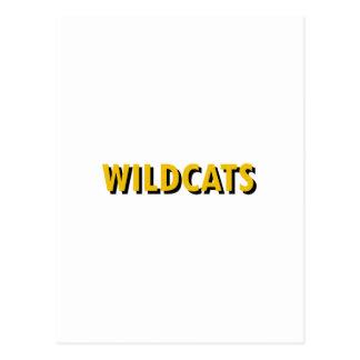 WILDCATS TEXT POSTCARD