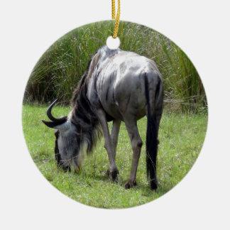 Wildebeest Backside Round Ceramic Decoration