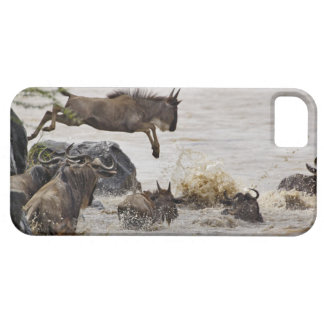 Wildebeest jumping into Mara River during iPhone 5 Covers