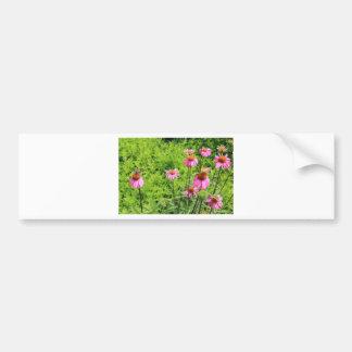 wildflower 099.JPG Bumper Sticker