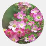 wildflower 1 round stickers
