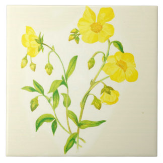 Wildflower Country Kitchen Ceramic Tile Buttercups