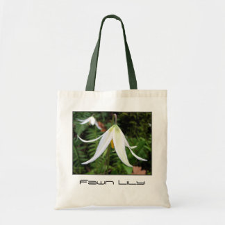 Wildflower - Fawn Lily