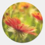Wildflower Field - Gaillardia Classic Round Sticker