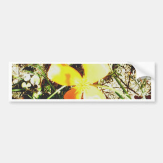 Wildflower Freedom Keepsake Collection Bumper Sticker