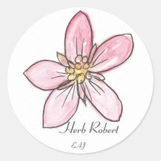 Wildflower Herb Robert Classic Round Sticker