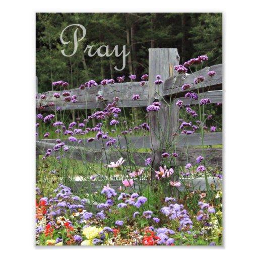 Wildflower Prayers Print Photo Art