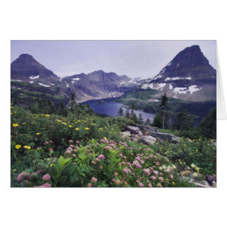 Wildflowers and Hidden Lake, Shrubby Greeting Card