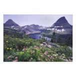 Wildflowers and Hidden Lake, Shrubby Photographic Print