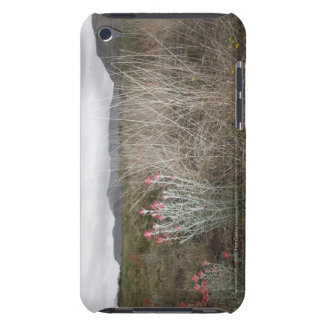 Wildflowers and Plants, Del Rio, Texas, USA iPod Touch Case