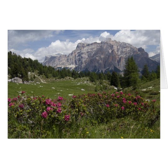 Wildflowers and the Dolomite Mountains, Italy Card