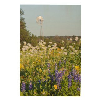 Wildflowers And Windmill In Texas Hill Country Wood Wall Decor